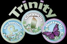 TrinityRNASeq